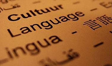 El lenguaje en los problemas escolares. ¿Causa o efecto?