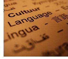 imagen El lenguaje en los problemas escolares